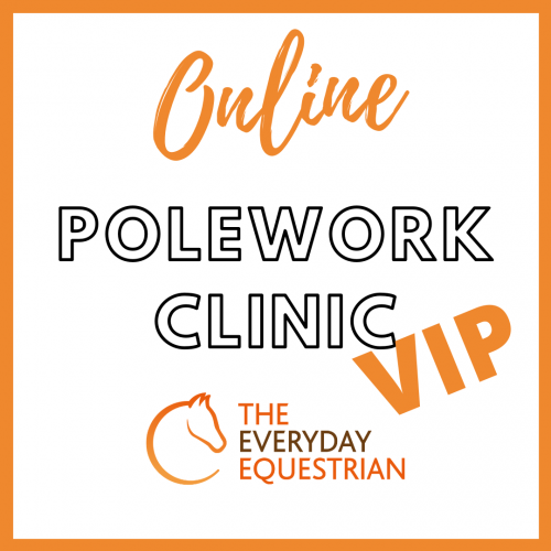 Online Polework Clinic