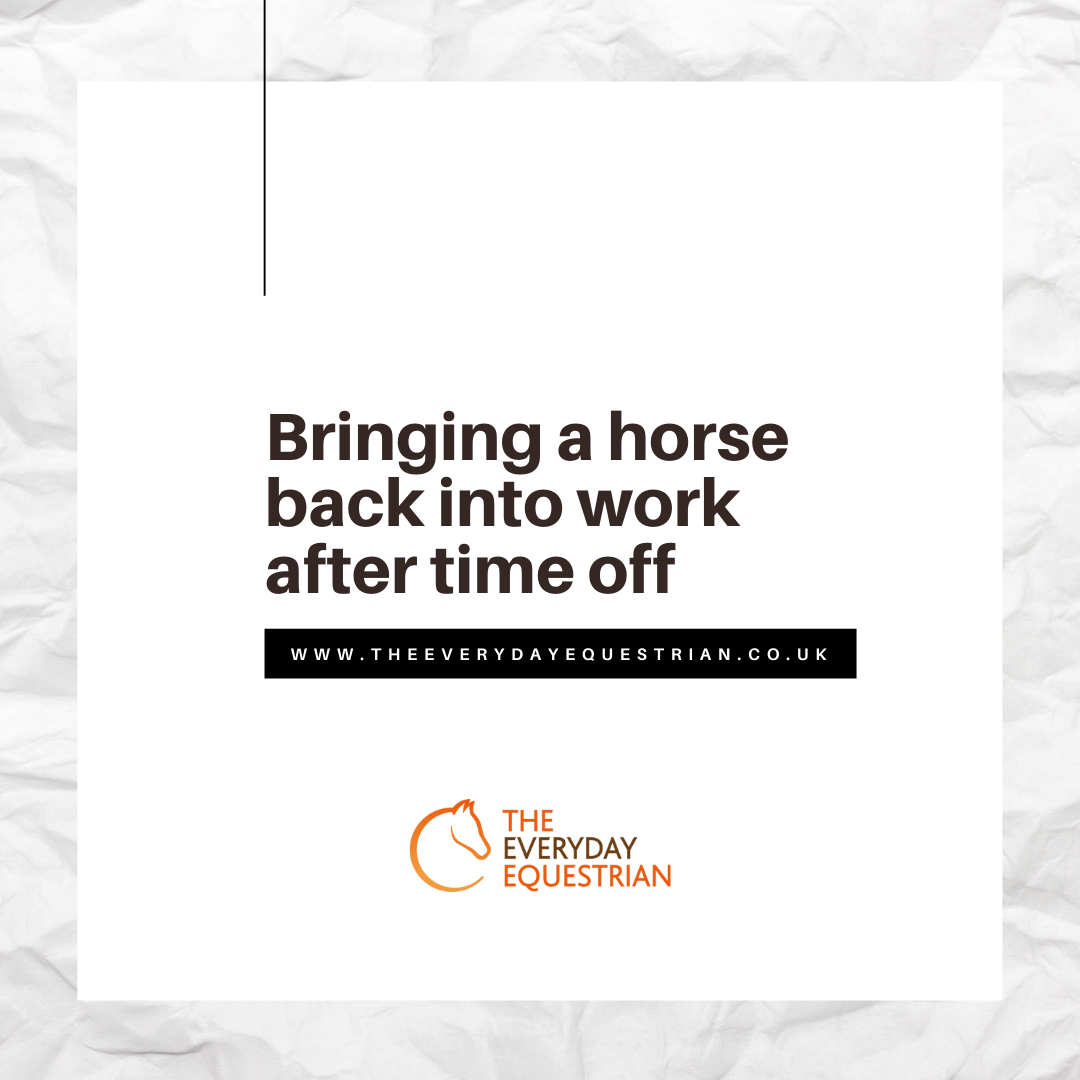 Bringing a horse back into work